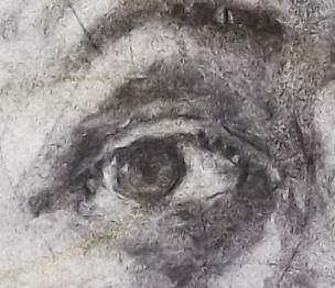 Auge_Zeichenkohle