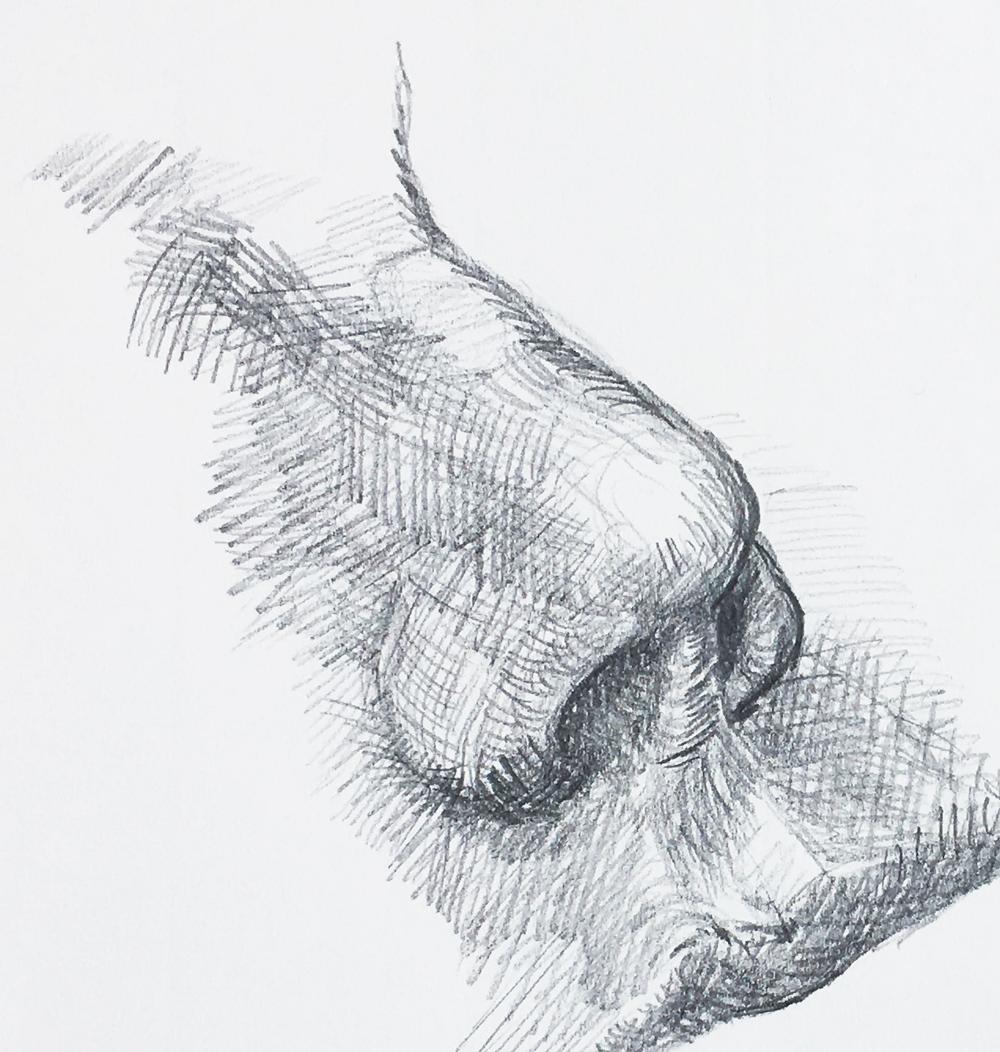 Nase-Formschraffur