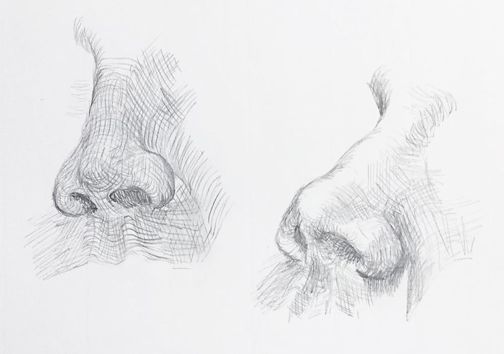Anatomie – Portrait und Figur zeichnen